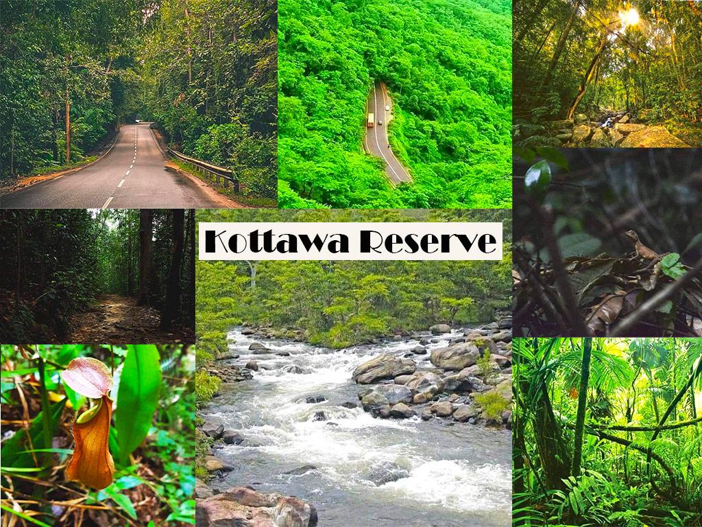 Kottawa Reserve